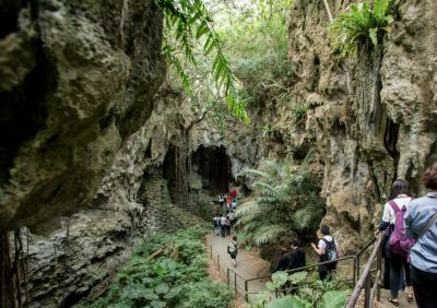 ガンガラーの谷 ガイドツアー