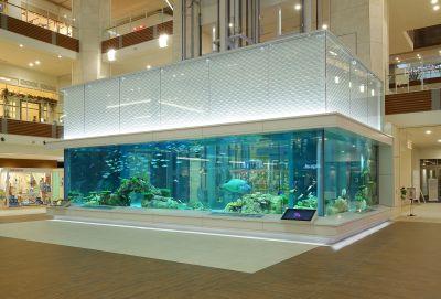 イオンモール沖縄ライカム 水槽