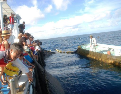 読谷村漁業協同組合「定置網漁体験」