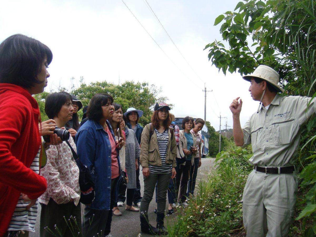 ヤンバル観察会「植物ガイドツアー」