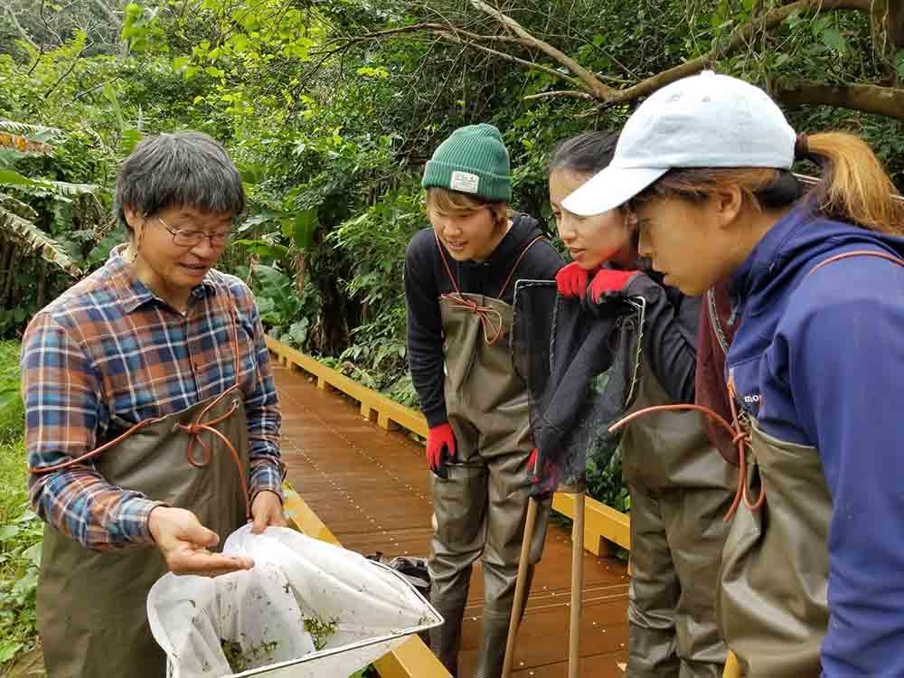 久米島ホタル館 SDGsプログラム 創るエコツアー・ナイト&デイ
