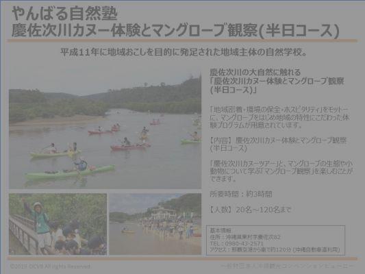 やんばる自然塾/慶佐次川カヌー体験とマングローブ観察(半日コース)