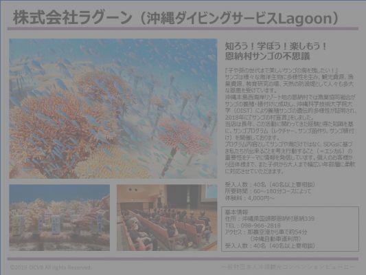 株式会社ラグーン(沖縄ダイビングサービスLagoon)