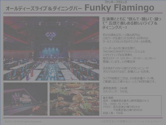 オールディーズライブ&ダイニングバー Funky Flamingo(ファンキーフラミンゴ)
