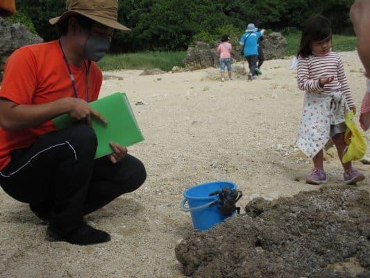 NPO法人 自然体験学校「沖縄の緑に触れる~森のフィールドワーク~」