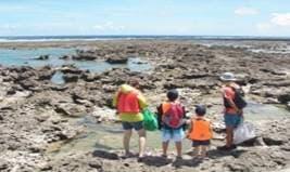NPO法人 自然体験学校「海と共生してきた沖縄の暮らしと文化を知る」